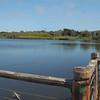 Locke Lake-Marina