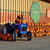 Pazzini's Market - Castroville