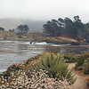 Whalers Cove, Point Lobos