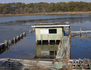 "The new Green Run had a pretty nice dock. Taken in 2004 I believe. This was the ""oyster shack"" where oysters and booze would be consumed after a hard day of gunning....."