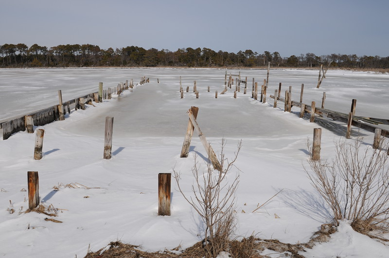 "Taken Feb 28 2015. Remains of the dock pilings at Green Run 2. The oyster shack was washed ashore during ""Sandy"""