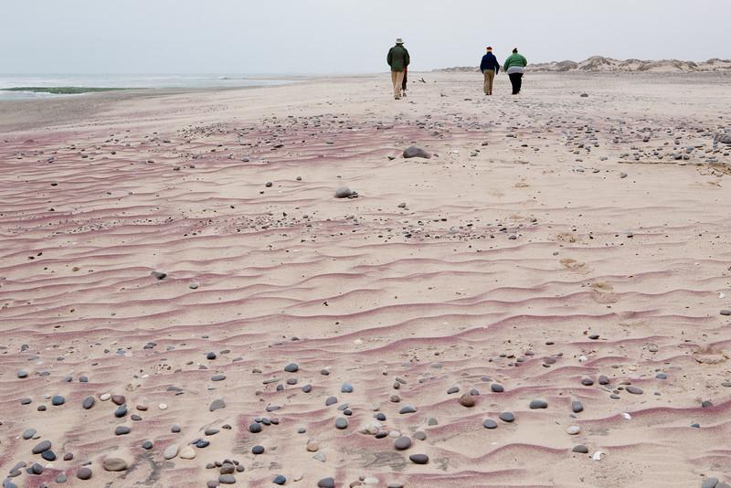 Pink Sand Grains
