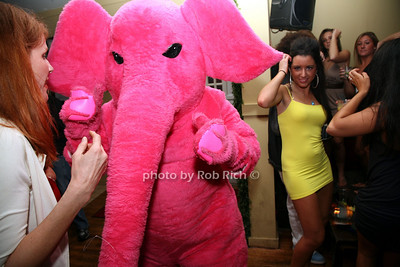 Flirting with the pink elephant