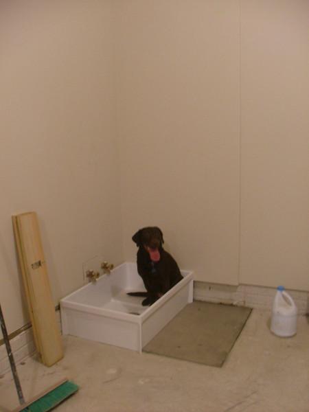 Lily's Pond....bathtub in the garage!