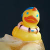 Cold Duck #3