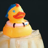 Cold Duck #6