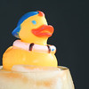 Cold Duck #4