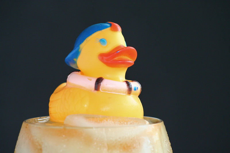 Cold Duck #1