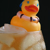 Cold Duck #2