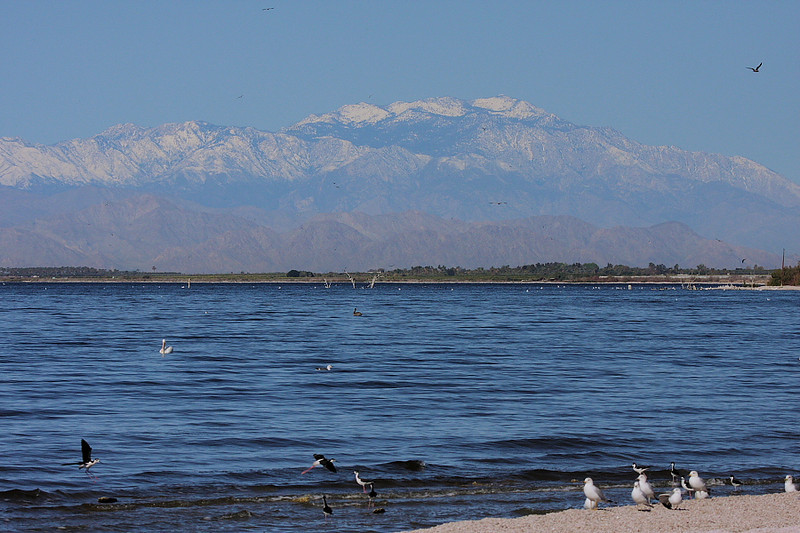 The scene at the Salton Sea Recreation Area near the north end of the Sea. This was taken during the late-February 2009 trip, when a strong winter storm brought the snow down to an unusually low level, adding to the beauty of the desert landscape.