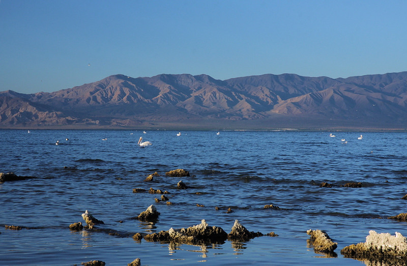 Another angle of the Salton Sea and the desert mountains looking south from the north shore, November 14 2010.