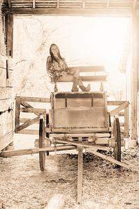 barn vintage (1 of 1)
