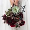 Edgy Bride 2-431