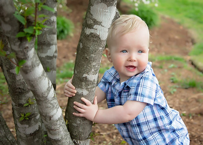 tree boy (1 of 1)
