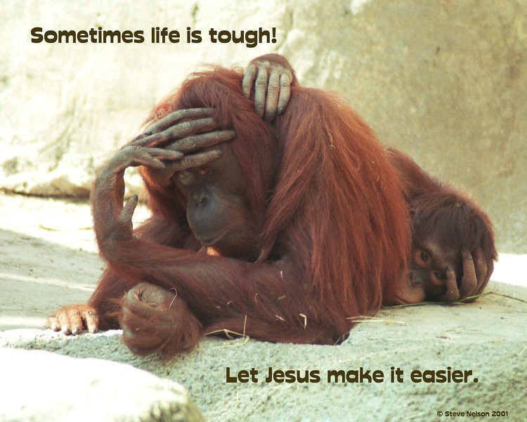 Jesus makes it easier
