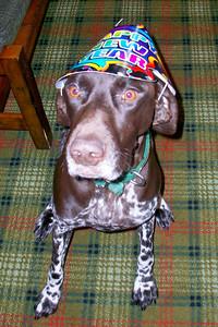 Baby New Year, Rudy 2010