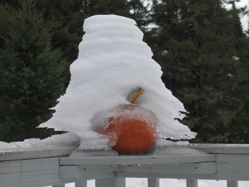 snowy pumpkin
