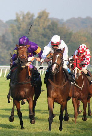 IMG_1212 Final Sceptre Stakes