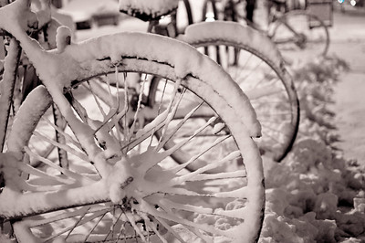 Snow covered bikes.