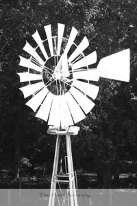 Greenway Windmill