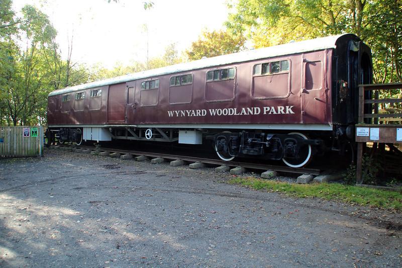 99018 Wynyard Wodland Park, Old Thewles Station, 20/10/12.