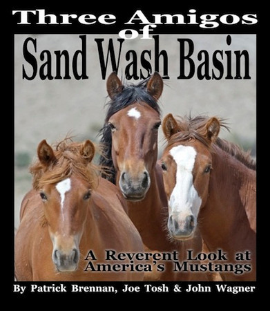 "<strong><font size=""4"">The Three Amigos of Sandwash Basin</font></strong></p> 		<p>Patrick has been photographing the Wild Mustang of Sand Wash Basin in NW Colorado with two other wild horse photographers and they have co-authored a book that is full of their collective ""Best of the Best"" wild Mustangs photos and many wonderful stories of their adventures together photographing  these magnificent  animals. Click on the link below and you can order a beautifully bound printed version, or download a digital PDF Copy. And for those of you with Apple formatted devises-you can download a Free e-book version of the book. </p> 		<p>  <a href=""http://www.blurb.com/b/4070695-three-amigos-of-sand-wash-basin-special-commemorat"" target=""_blank"">GO TO BLURB.COM</a></p> 		<p>  <a href=""https://www.facebook.com/groups/467259163318480"" target=""_blank"">The Three Amigos Facebook Page</a>"