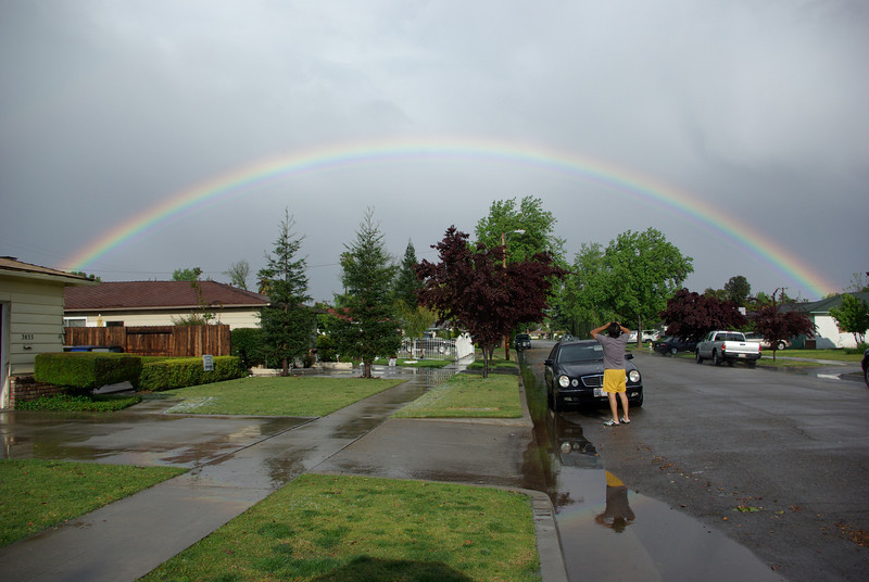 The Big Rainbow