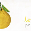 header lemon 13
