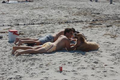 Tiger at the Beach