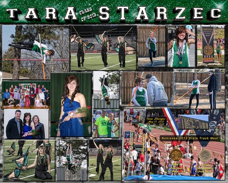 Tara Starzec 16 X 20 inch 2013 Collage