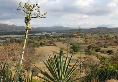 the surprising landscape of timor leste