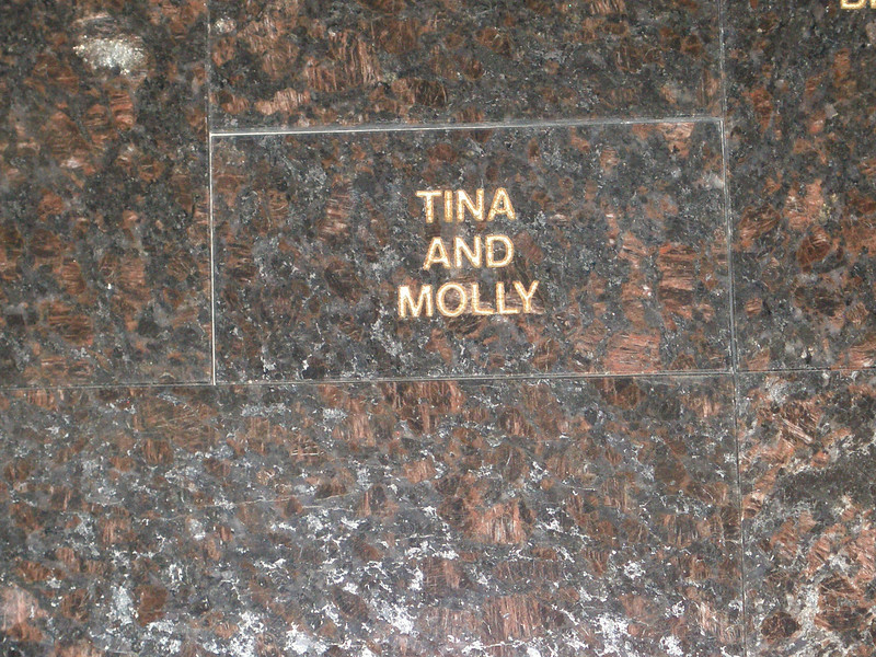 Valley Animal Shelter:  Tina's tribute to her cat Molly.  Picture contributed by Mark H.