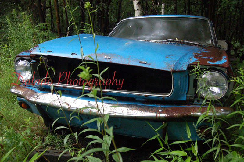 A 1965 or 1966 Ford Mustang in the woods of Coal Township.