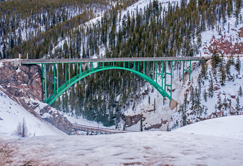 A Green Bridge
