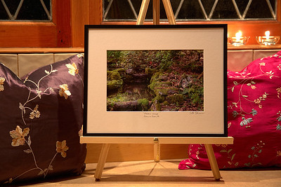 "Toad Hollow Photography - Framed Prints - Visit Our ""Limited Edition Prints of Vancouver Island"" Page For Details"