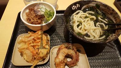 Tachikawa Japan2016-175929