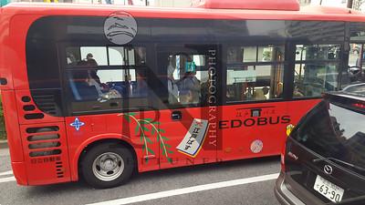 TsujikiFishMarket Tokyo-140724