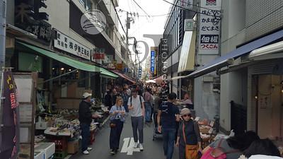 TsujikiFishMarket Tokyo-115937