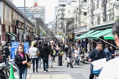 TsujikiFishMarket Tokyo-2741