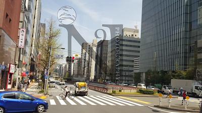 TsujikiFishMarket Tokyo-110051