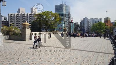 TsujikiFishMarket Tokyo-103429