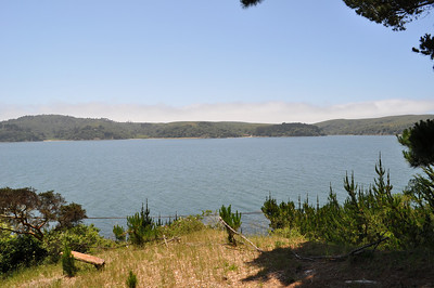 Tomales Paradise