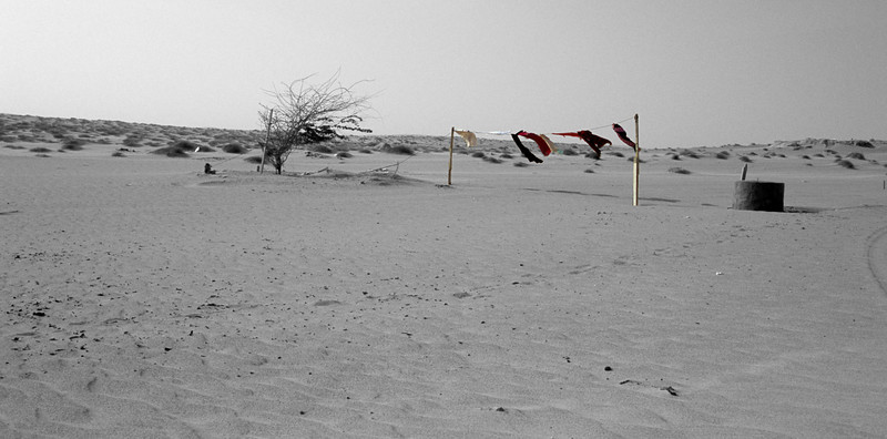 Between the desert and the sea. Wahiba Sands, Oman.