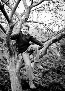 Quinn in a Tree bw (1 of 1)
