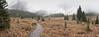 IMG_7142 Panorama