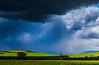 Spring Storm near Culverden