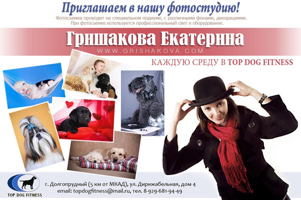 http://www.grishakova.com/Other/TopDogFitness/i-2rTKNN5/1/XL/Kate-XL.jpg
