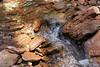 Kolob Canyon 7