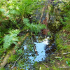 Crossing the swamp near Ball Club Creek.