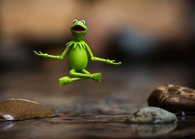 Kermit Meditation